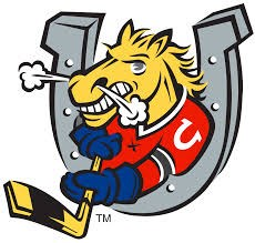 Logo for Barrie Colts