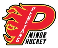 Logo for Penetang Flames